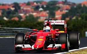 Картинка Ferrari, Formula 1, Vettel, Передок, 2015, SF15T, Прямая