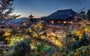Картинка лес, дом, япония, вечер, сакура, киото, дом самураев