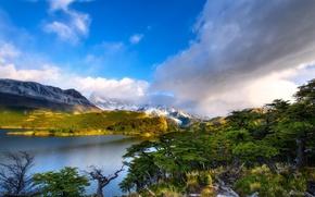 Картинка лес, облака, деревья, горы, природа, озеро, река