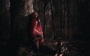 Картинка лес, девушка, собака, плащ, Arya, Laurent KC