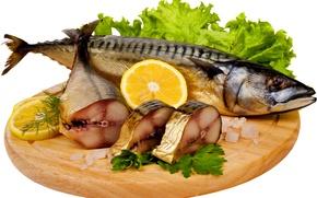 Картинка фото, Лимон, Рыба, Лайм, Еда, Морепродукты