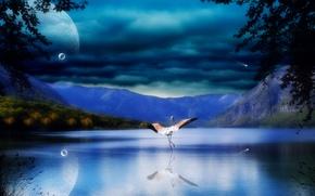 Картинка отражение, горы, Пейзаж, аист, листья, море, вода, скалы, река, тучи, планеты, крылья, природа, деревья, птица, ...