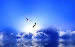 Обои облака, чайки, Blue Paradise