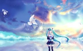 Картинка небо, девушка, облака, закат, цветы, букет, аниме, лепестки, арт, голуби, vocaloid, hatsune miku