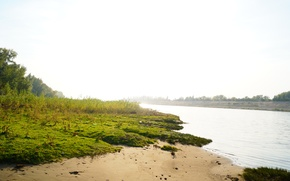 Картинка песок, пляж, трава, вода, солнце, природа, роса, река, настроение, рассвет, красота, утро, Берег, дикий мир