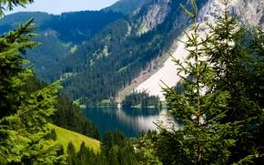 Картинка Nature, Mountains, Austria, Alpes, Lake, Trees, Meadow, Tannheimer Tal, Vilsalpsee