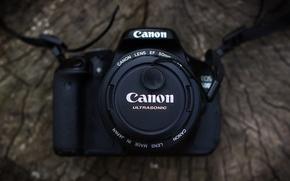 Картинка дерево, фотоаппарат, объектив, canon