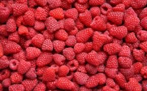 Картинка ягоды, малина, много, еда