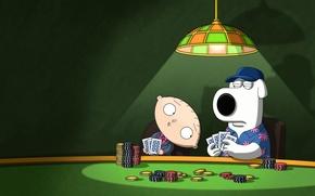 Картинка dog, look, poker, stewie, brian, Family guy