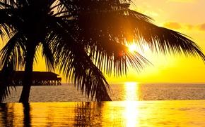 Картинка закат, пальма, океан, бассейн, курорт