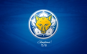 Картинка wallpaper, sport, logo, football, Leicester City FC, King Power Stadium