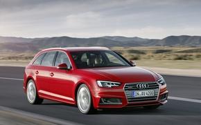 Обои 2015, TDI, quattro, Avant, ауди, Audi, S line