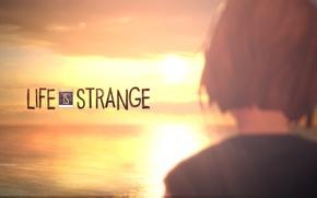 Картинка закат, sunset, Max, Макс, Life is Strange