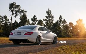 Обои дорога, белый, деревья, Mercedes-Benz, седан, мерседес, вид сзади, AMG, амг, adv.1, цлс63, CLS63