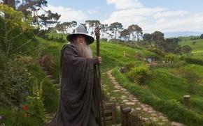 Обои Gandalf, дед, The Hobbit: An Unexpected Journey, Хоббит: Нежданное путешествие, колдун, Ian McKellen, Иэн МакКеллен