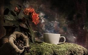 Картинка цветок, кофе, мох, кружка, ваза, мешок, зёрна