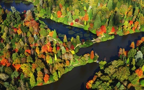 Картинка осень, деревья, краски, Англия, панорама, Сассекс, парк Шеффилд