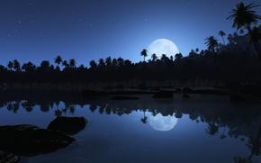 Обои луна, Пальмы, звезды, отражения