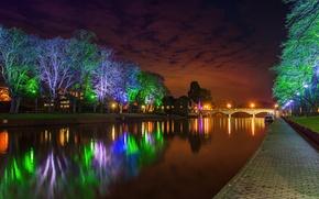 Картинка небо, деревья, ночь, мост, огни, парк, река