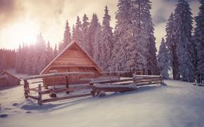 Картинка зима, снег, елки, деревня, хижина, landscape, winter, snow