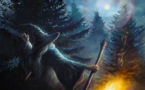 Картинка лес, деревья, огонь, луна, фэнтези, гномы, посох, fire, Moon, fantasy, ёлки, волшебник, фанарт, fanart, Хоббит, ...