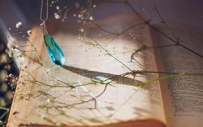 Картинка цветы, голубой, кулон, книга, украшение, топаз