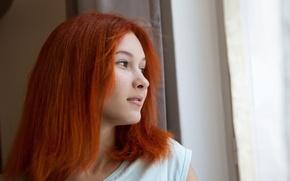 Картинка девушка, милая, рыжая, смотрит, в окно