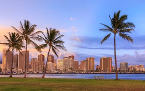 Обои газон, облака, тропики, трава, небо, Гавайи, Honolulu, море, яхты, берег, залив, дома, скамейка, Waikiki, пальмы