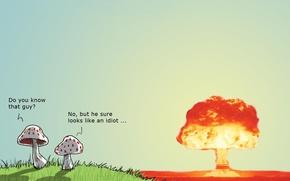Обои юмор, Wulffmorgenthaler, гриб, атомный взрыв, бомба