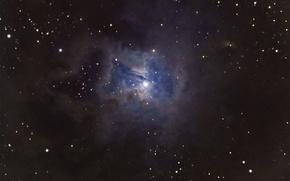 Картинка Цефей, отражательная, Ирис, в созвездии, скоплением, с рассеянным, звёздным, туманность