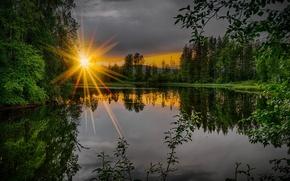 Обои закат, лес, река, ветки, лето, зелень, вечер, лучи солнца, деревья