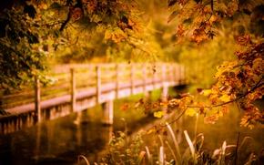 Обои осень, мост, река