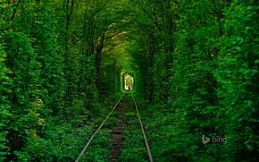 Картинка дорога, лес, деревья, рельсы, силуэт, Украина, тоннель любви, Клевань