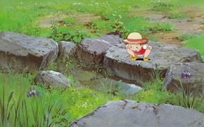 Картинка лето, трава, камни, шляпа, лужа, девочка, ирисы, мой сосед тоторо, любопытство, art, tonari no totoro, ...