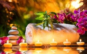 Картинка цветы, полотенце, свечи, орхидеи, flowers, candles, orchids, towel, спа камни, Spa stones