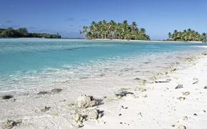 Картинка пляж, пальмы, океан, берег, экзотика, лагуна