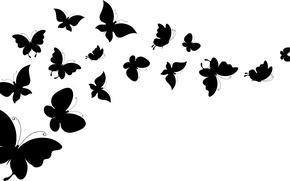Картинка белый, бабочки, фон, крылья, силуэты