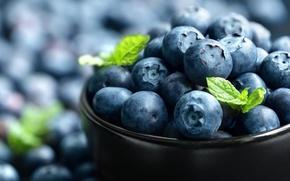 Обои ягоды, черника, миска, fresh, blueberry, голубика, berries