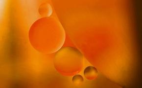 Обои шарики, вода, масло, пузырьки, воздух