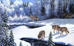 Картинка зима, иней, животные, снег, река, волки, живопись, ёлки, сказочный лес, On the Prowl, волчья стая, …