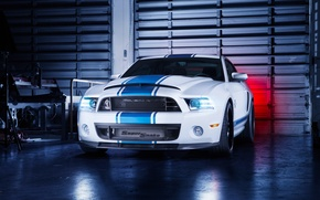 Картинка Mustang, Ford, Shelby, GT500, Front, Snake, White, Super