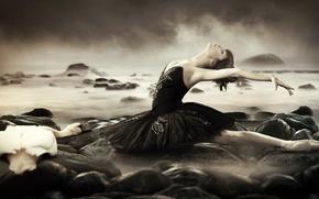 Картинка море, девушка, ситуация, лебедь
