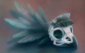 Картинка бабочка, перья, клюв, арт, череп