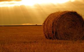 Обои поле, Солнце, стог