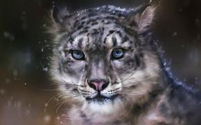 Картинка снег, хищник, арт, леопард, дикая кошка, rong rong