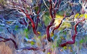 Картинка трава, линии, цветы, ветки, природа, дерево, краски, штрих