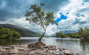 Картинка небо, облака, горы, озеро, камни, дерево, берег, Англия, лодки, Уэльс, Сноудония
