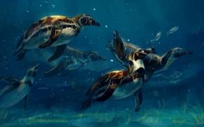 Картинка пингвины, под водой, by AlaxendrA