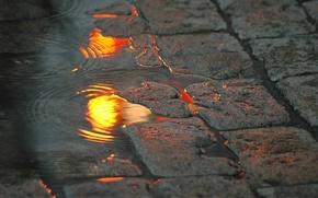 Обои огни, лужа, улица, вода, отражение, брусчатка