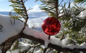 Картинка зима, снег, горы, новый год, шарик, сосна, Адыгея, Кубань, высота 2000 м, плато Лаго-Наки